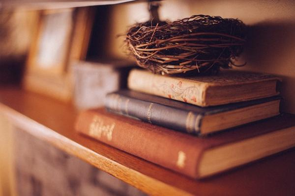book shelf 349934